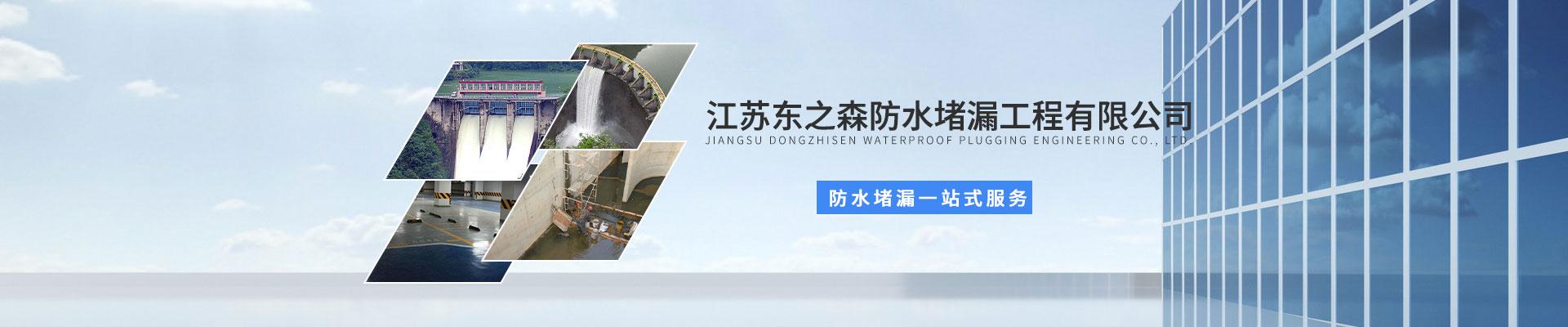 江苏东之森防水堵漏有限公司